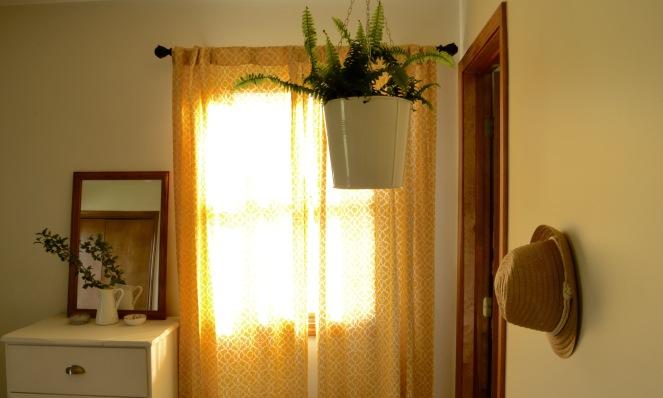 Sunlight through the bedroom window after breakfast ends.